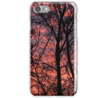 Winter dawn iPhone Case/Skin