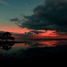 Nudgee Beach At Dawn. Brisbane, Queensland, Australia. by Ralph de Zilva