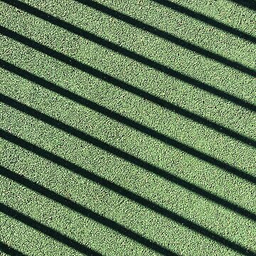 Fence shadow on the green tartan background. by Zhitkov