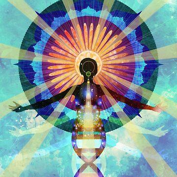 Ascension by ImageMonkey