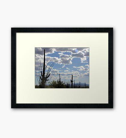 Desert Skies Framed Print