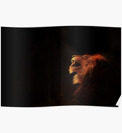 Lion King Poster
