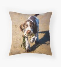 Brown Roan Italian Spinone Puppy Dog Retrieving Seaweed At The Beach Throw Pillow