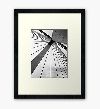 Bird's Eye View Framed Print