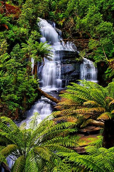 Triplet Falls by Phil Thomson IPA