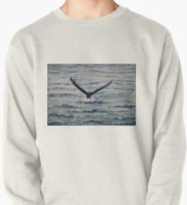 We Have Liftoff 1 Pullover
