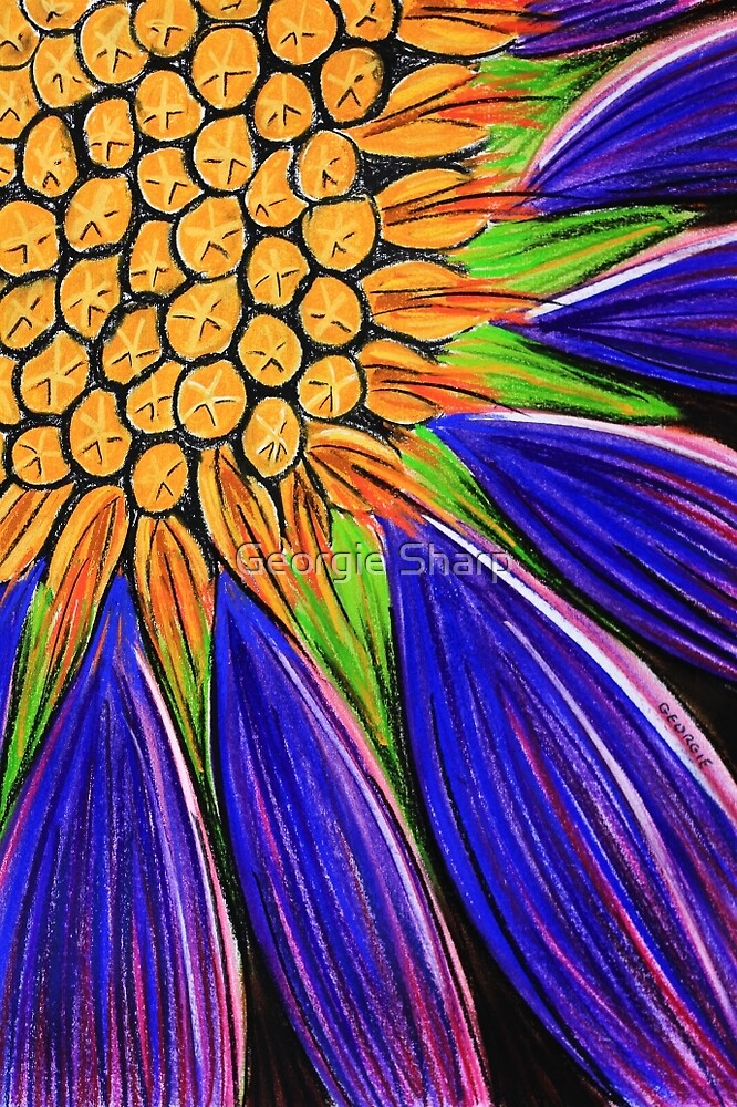 Pastels - Koonamore Daisy (erodiophyllum elderie) by Georgie Sharp