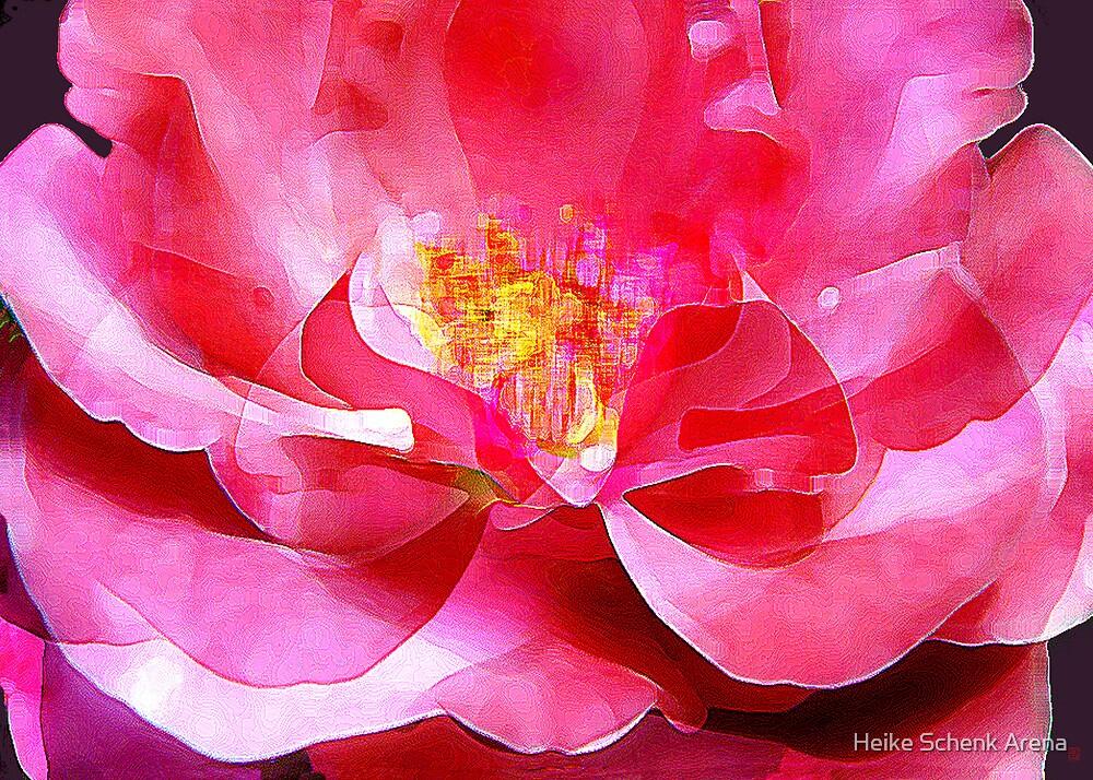 Wild rose by Heike Schenk Arena