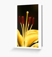 Stamens Greeting Card