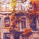 Autumn Brownstones New York City by Vivienne Gucwa