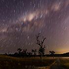 spinning stars by warren dacey