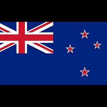 Kiwi Flag Sticker Sheet - New Zealand Stickers by stickersandtees