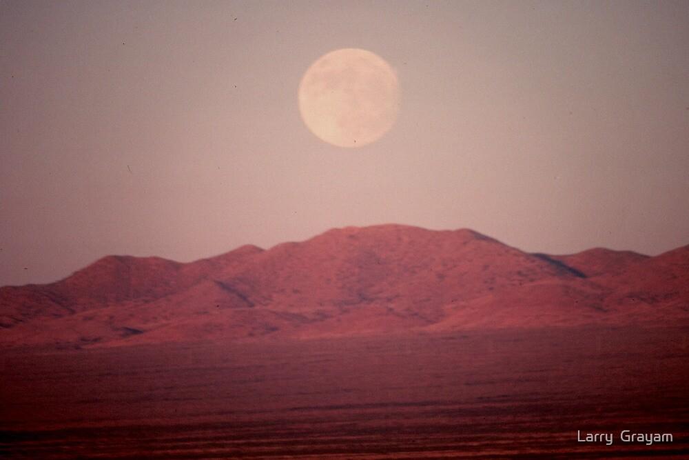 Arizona Moonrise by Larry  Grayam
