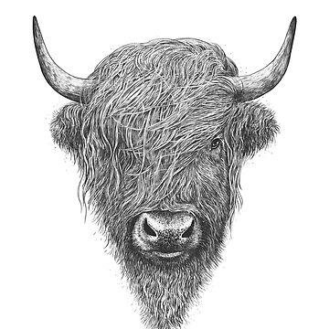 Highland Bull by kodamorkovkart
