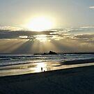 Palm Beach Sunrise  by Annie Smit