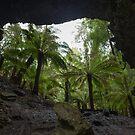 Trowutta Arch, Tasmania by Clare Colins
