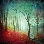 Red Depression - Misty forest and creek by Dirk Wuestenhagen