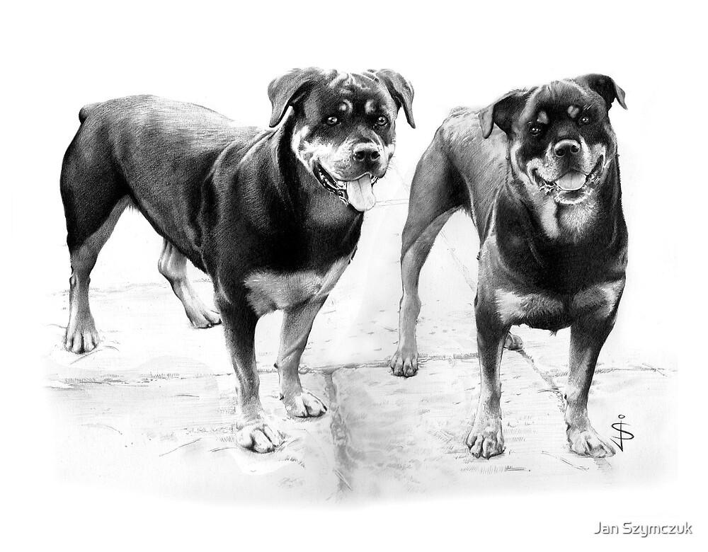 Sasha and Holly by Jan Szymczuk