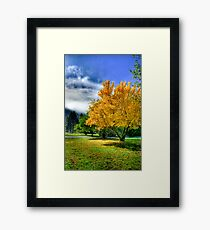 Autumn hdr Framed Print