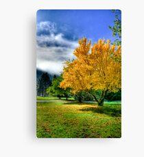 Autumn hdr Canvas Print