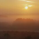 Burning Off The Mist by relayer51