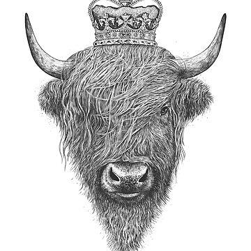 The King Highland Bull by kodamorkovkart
