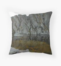 Textures and refections Throw Pillow