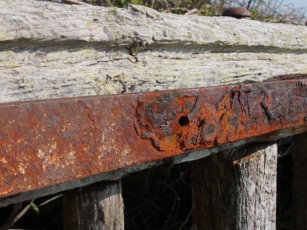 Gate hinge by woodlandninja