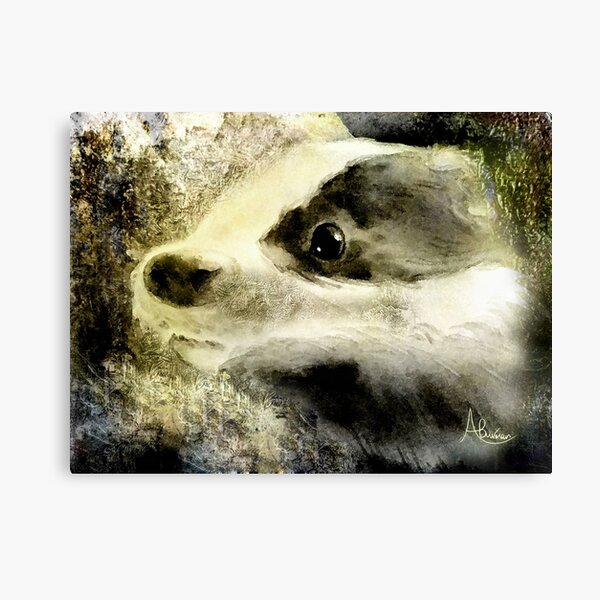 Baby Badger Canvas Print