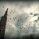 Fly above... by aciddream