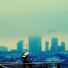 Viennese view by aciddream