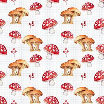 Mushrooms by krayis
