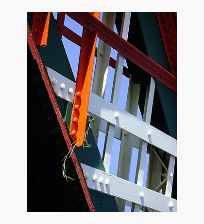 amid steel (plant and bridge-girders) Photographic Print