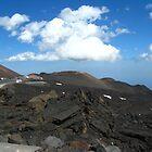 Crateri Silvestri by Maria1606