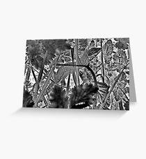 Lill` lizard in tall grass Greeting Card