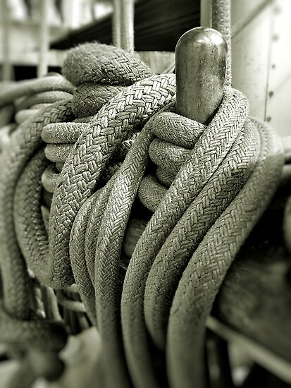 Roped At Falmouth by Mike Honour