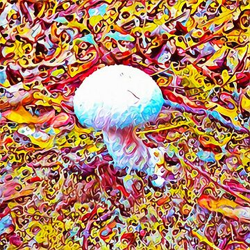 The Mushroom by creepyjoe
