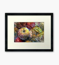 stone fruit Framed Print