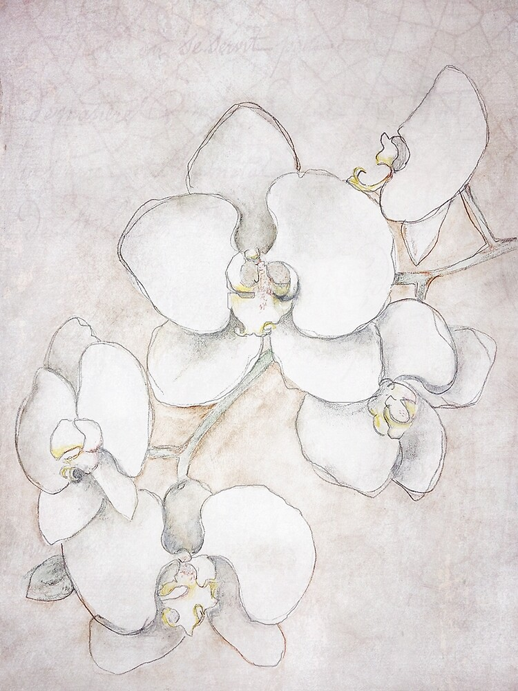Phalaenopsis Orchid Painting by Journey Home Made by JourneyHomeMade