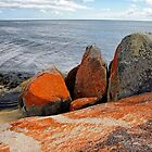 Bay of Fires 4 by Harry Oldmeadow