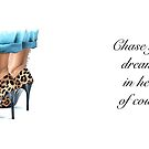 Chase your dreams by Elza Fouche