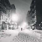 Blizzard in New York City by Vivienne Gucwa