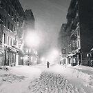 «Blizzard en la ciudad de Nueva York» de Vivienne Gucwa