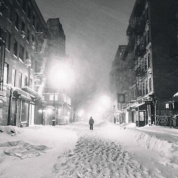 Blizzard en la ciudad de Nueva York de vgucwaphoto