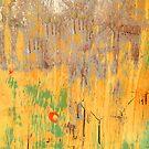 SpLaSh by Madeleine Forsberg
