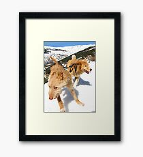 Snow stompin' in the alpujarras, Spain Framed Print