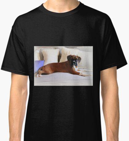 Nicht mein Bett ... sagst du? - Boxer Dogs Series Classic T-Shirt