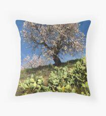 Almonds in the Alpujarras, Spain Throw Pillow