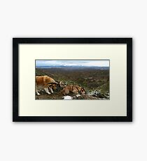 Stalemate in Gorafe, Spain Framed Print
