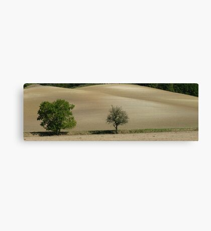 Dead or Alive, France Canvas Print